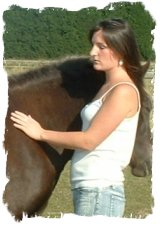 equine reiki for horses master practitioner course