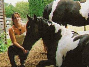learning animal reiki for animals