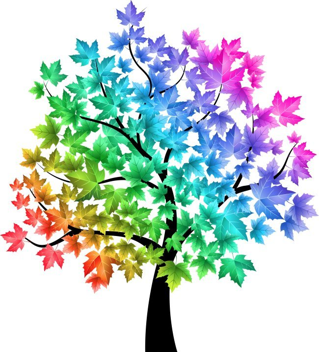 reiki evolution rainbow tree