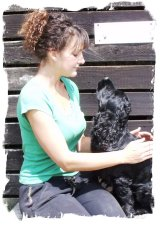 animal reiki course