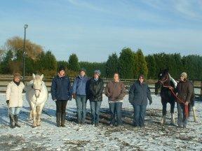 equine reiki workshop attunements