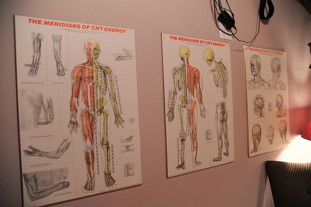 five element reiki meridians organs